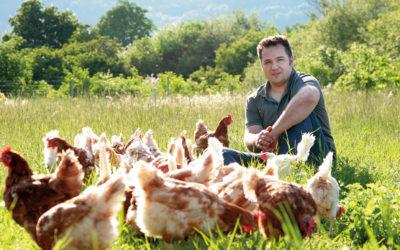 Eier vom Sonnenbühlhof