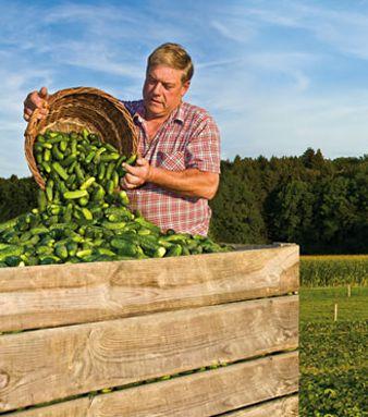 Eingelegtes Gemüse von Hirschers